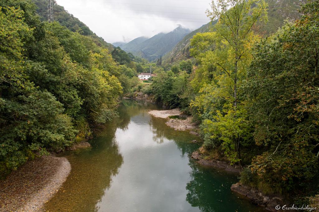 Río Sella (Dego)